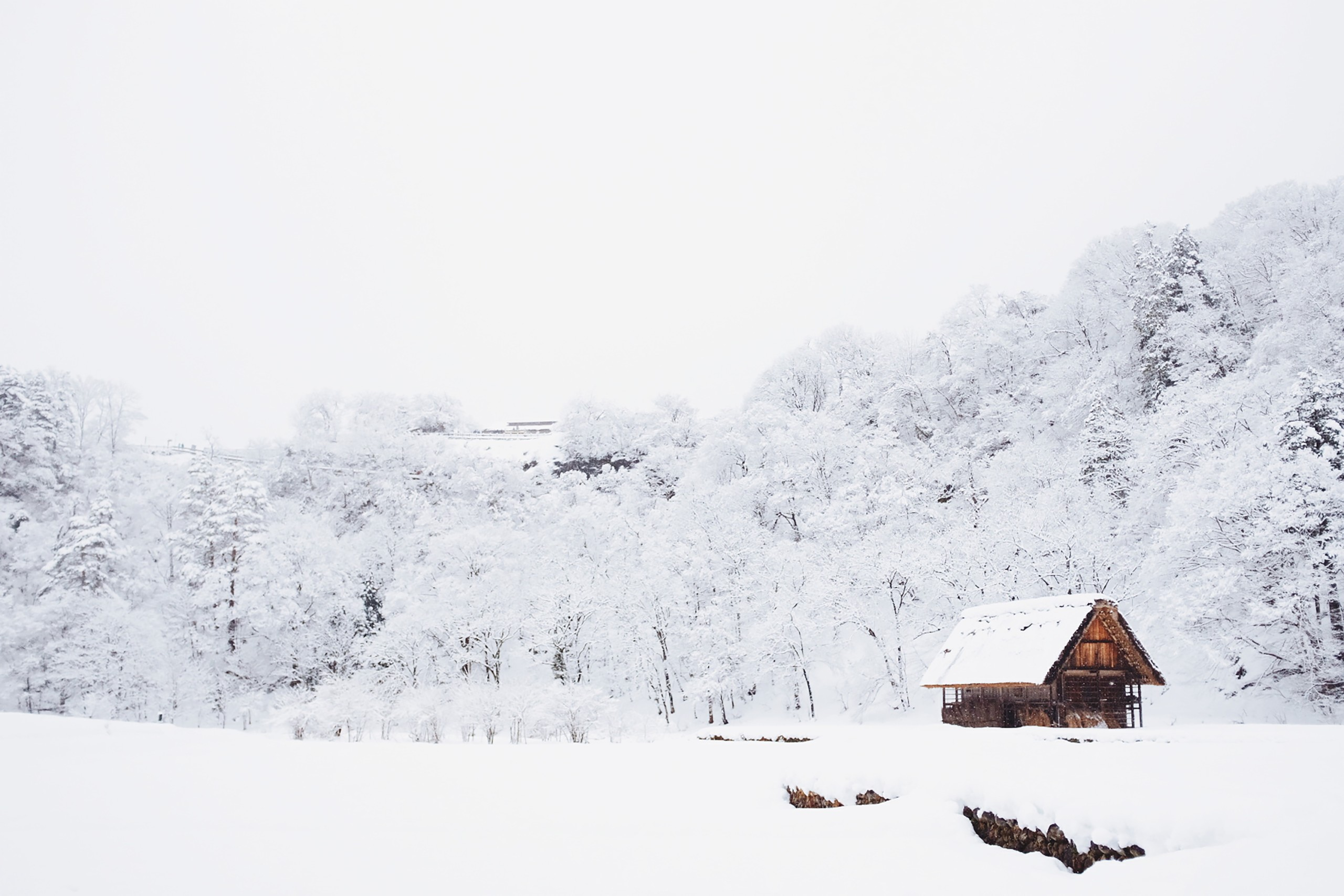 A cabin in social isolation Photo by Fabian Mardi on Unsplash